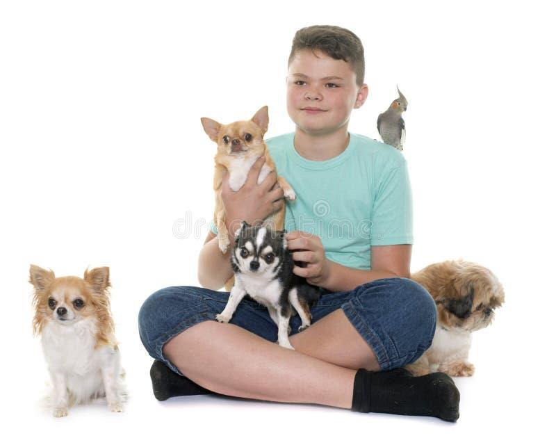 Junge und Haustier stockbilder