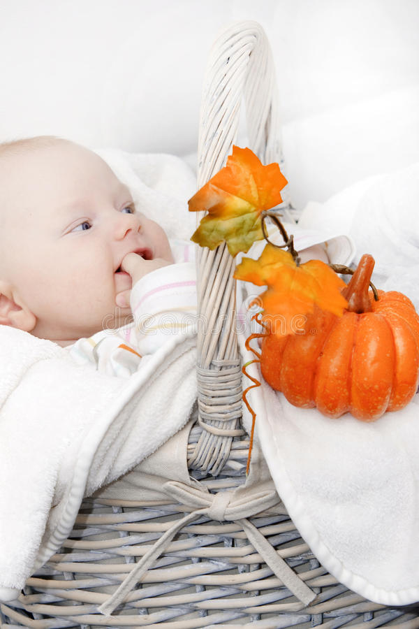 Junge und Herbstkorb stockbilder