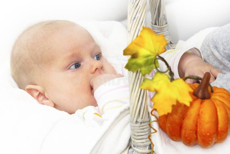 Junge und Herbstkorb lizenzfreie stockfotografie