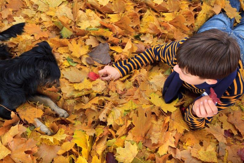 Junge und Hund, die im Herbst spielen stockbild