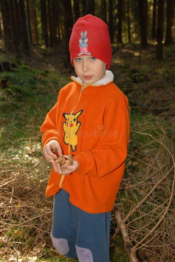 Junge und Pilze stockfotos