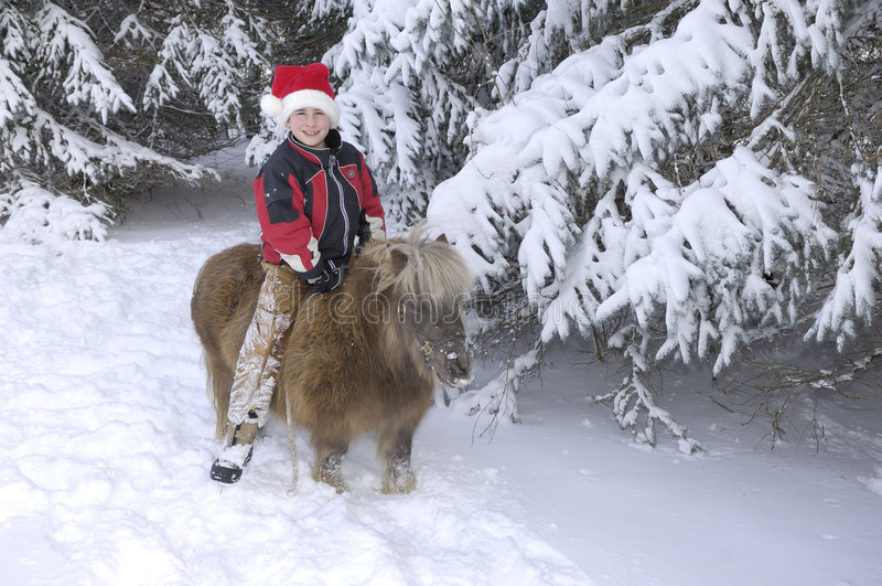 Junge und Pony stockfotos