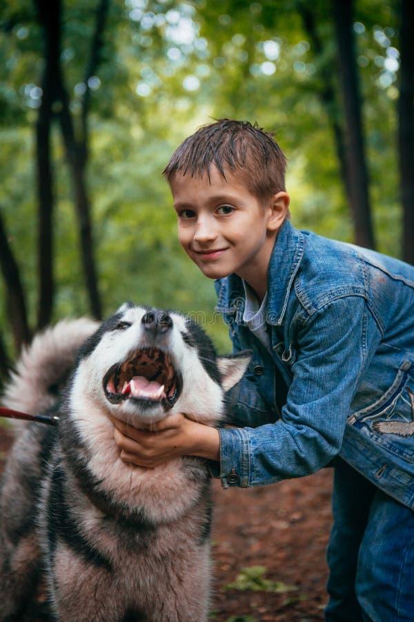 Junge und seiner verfolgen Schlittenhund auf dem Hintergrund von Blättern im Frühjahr lizenzfreie stockfotografie