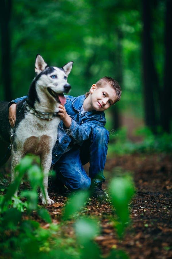 Junge und seiner verfolgen Schlittenhund auf dem Hintergrund von Blättern im Frühjahr lizenzfreie stockbilder