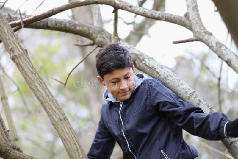 Junge unter den Bäumen stockbilder
