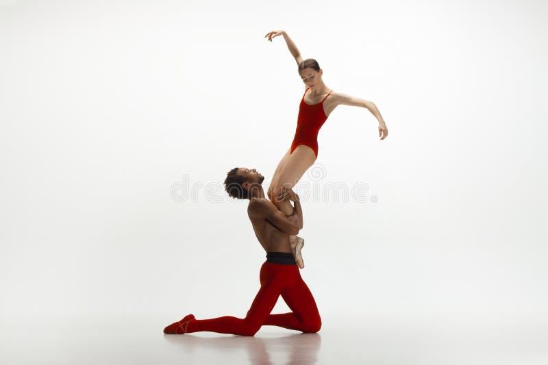 Junge würdevolle Paare von den Balletttänzern, die auf weißen Studiohintergrund tanzen lizenzfreies stockbild