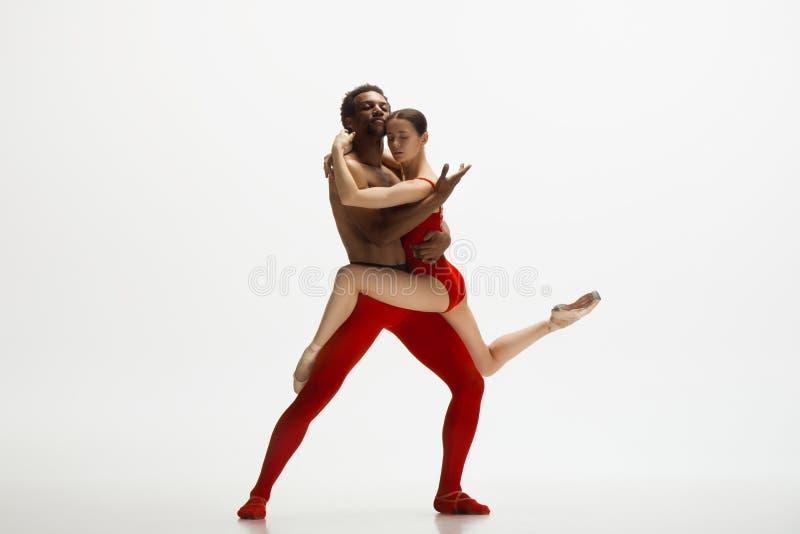 Junge würdevolle Paare von den Balletttänzern, die auf weißen Studiohintergrund tanzen lizenzfreie stockbilder
