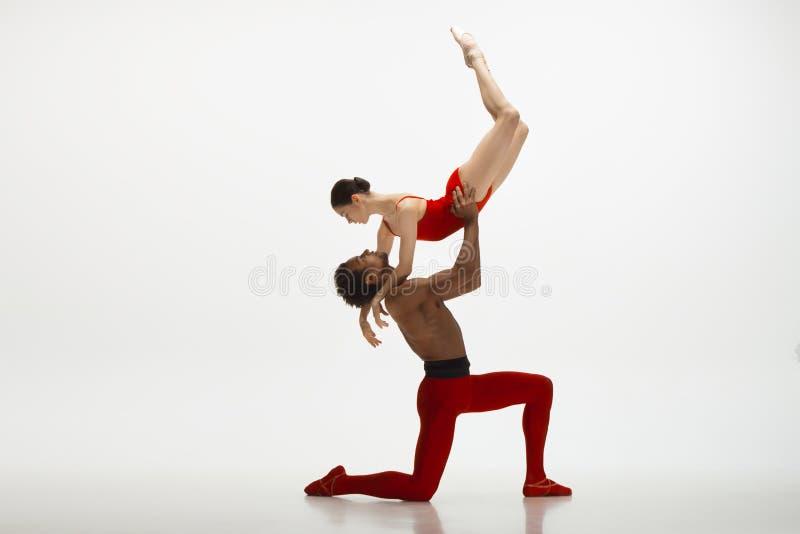 Junge würdevolle Paare von den Balletttänzern, die auf weißen Studiohintergrund tanzen stockfoto