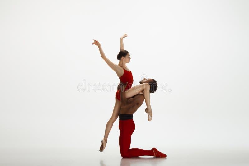 Junge würdevolle Paare von den Balletttänzern, die auf weißen Studiohintergrund tanzen lizenzfreies stockfoto