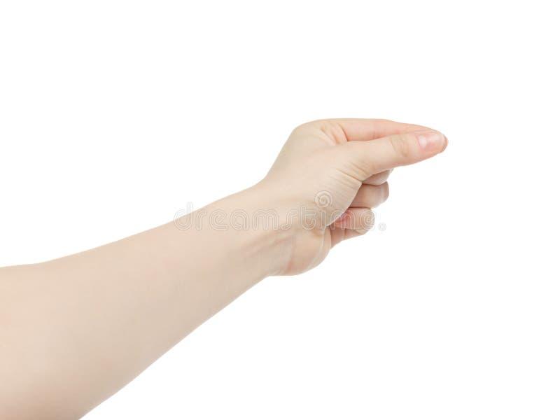 Junge weibliche linke Hand, zum etwas zu halten lokalisiert auf Weiß stockbild