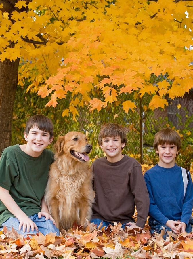 Jungen in den Fall-Blättern lizenzfreie stockfotos