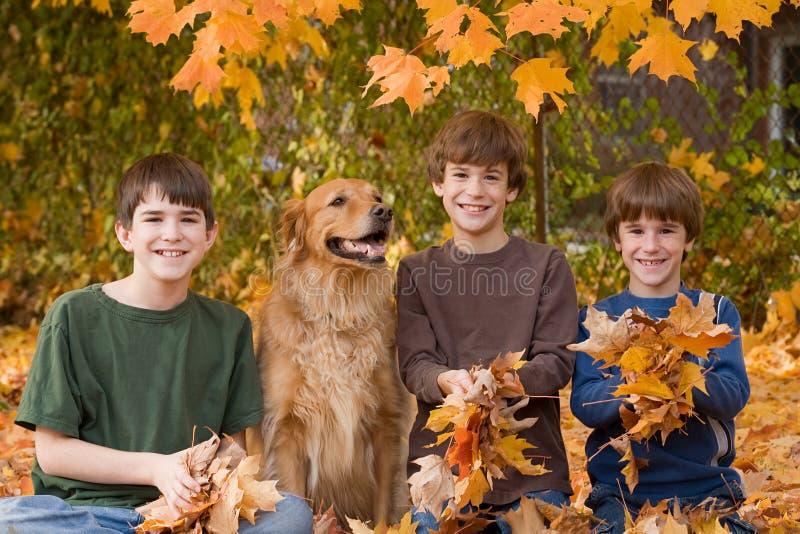 Jungen in den Fall-Blättern stockfoto