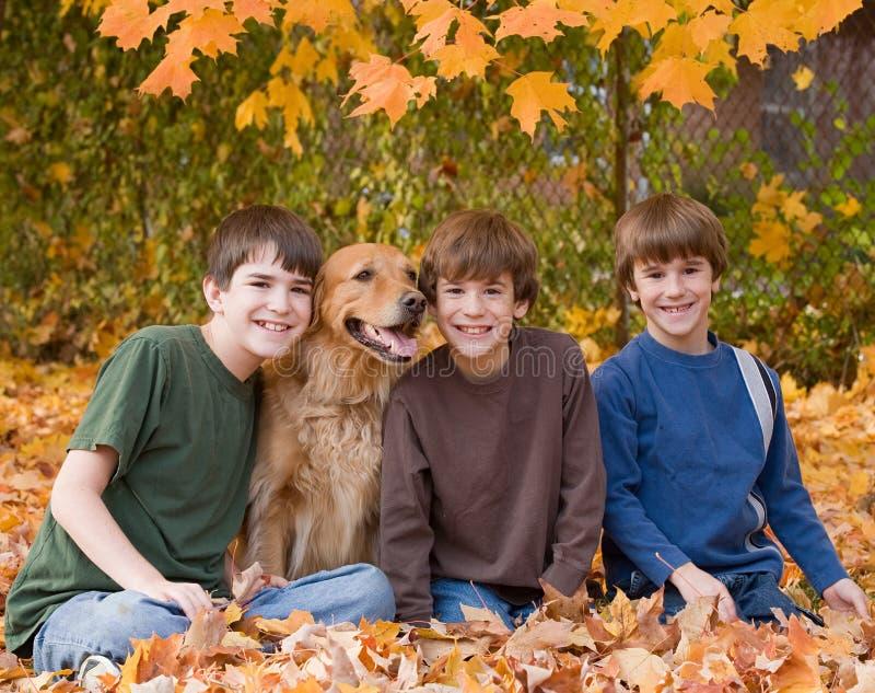 Jungen in den Fall-Blättern stockbilder