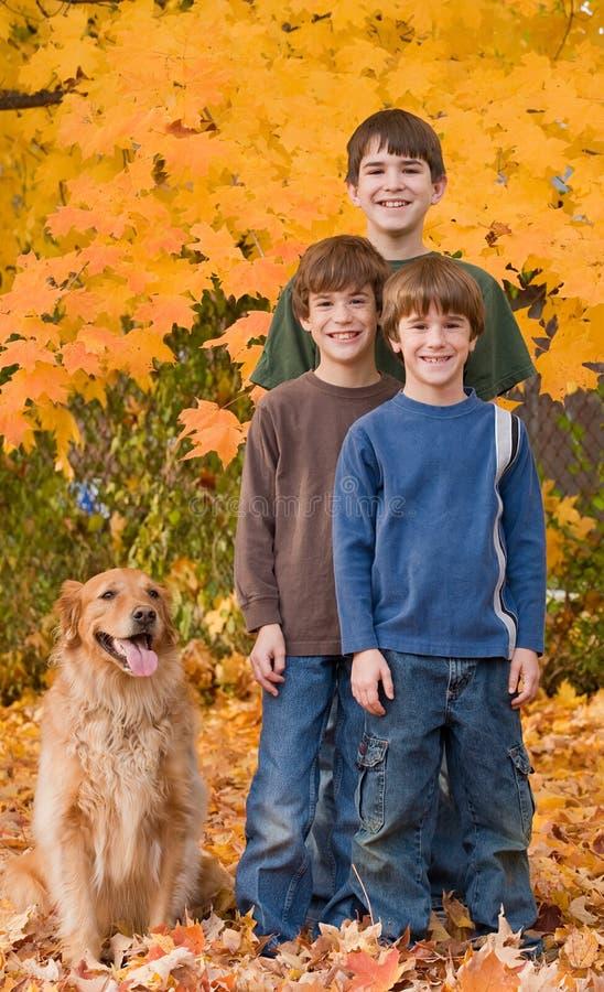 Jungen in den Fall-Blättern lizenzfreies stockfoto