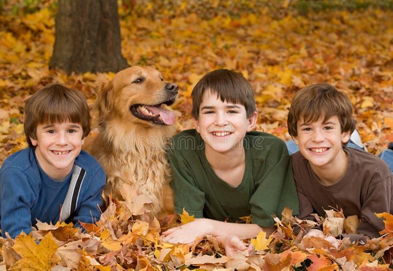 Jungen in den Fall-Blättern stockfotografie