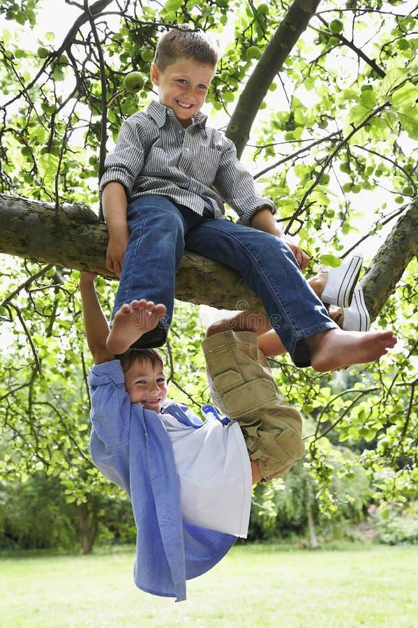 Jungen, die auf Baumast spielen stockfotografie