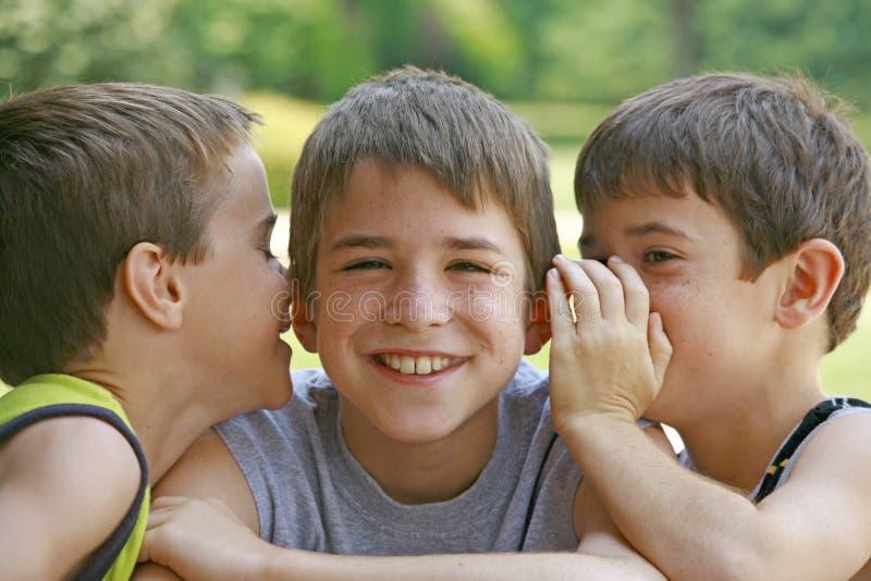 Jungen, die Geheimnisse erklären stockfotografie