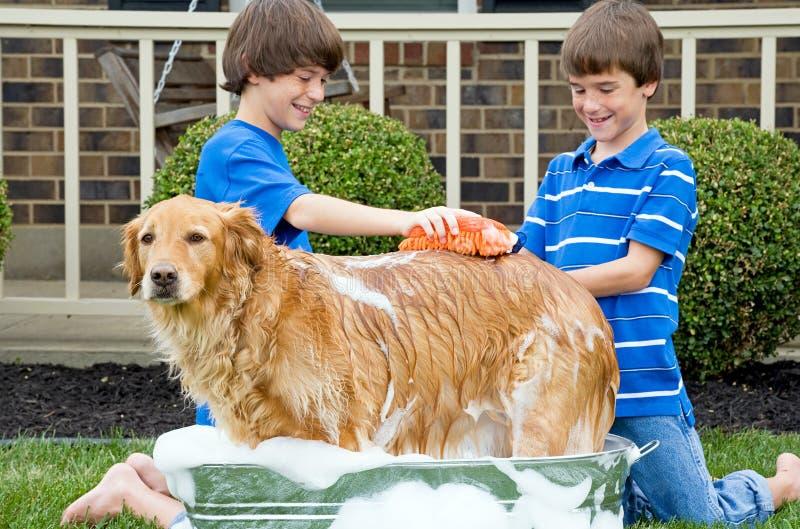 Jungen, die Hund ein Bad geben stockfotografie