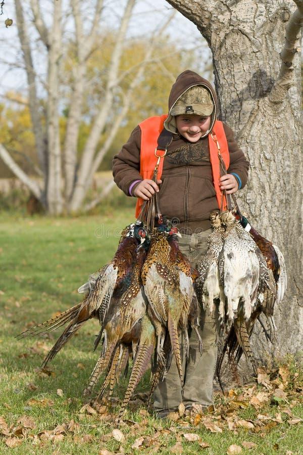 Jungen-Fasan-Jagd stockfoto