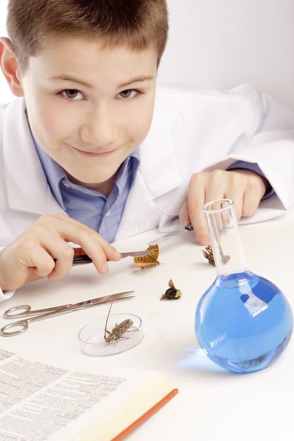 Jungen-Genie-Wissenschaftler lizenzfreies stockbild