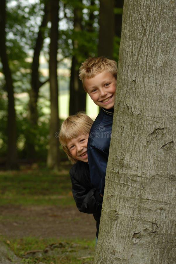 Jungen im Holz stockfotografie