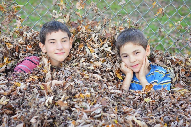 Jungen im Stapel von Blättern stockfoto