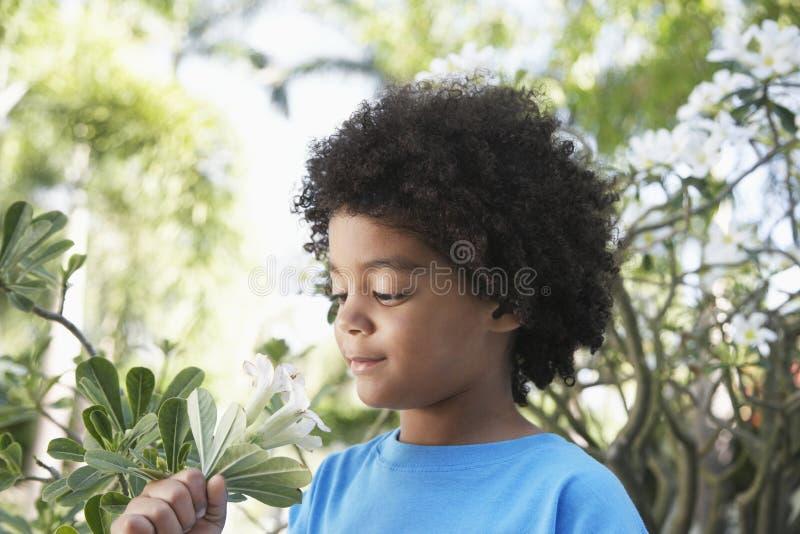 Jungen-riechende Blumen im Garten lizenzfreies stockbild