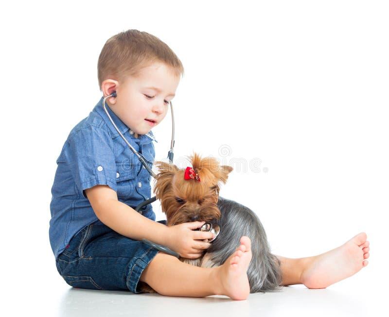 Jungenkinderüberprüfenhund auf weißem Hintergrund lizenzfreie stockfotografie