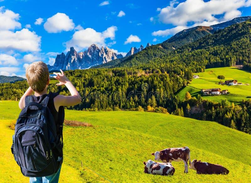 Jungenphotographien bewirtschaften Kühe mit einem Handy lizenzfreies stockbild