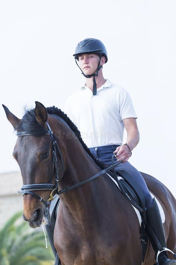 Jungenreiter zu Pferd lizenzfreie stockfotografie