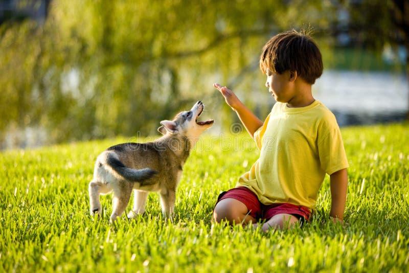Junger asiatischer Junge, der mit Welpen auf Gras spielt stockfoto