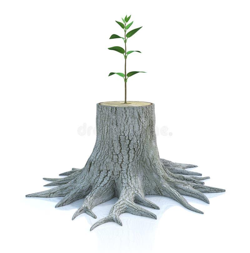 Junger Baumsämling wachsen vom alten Stumpf vektor abbildung