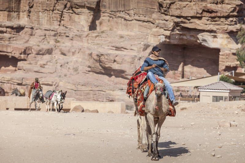 Junger Beduine, der ein Kamel reitet stockbild