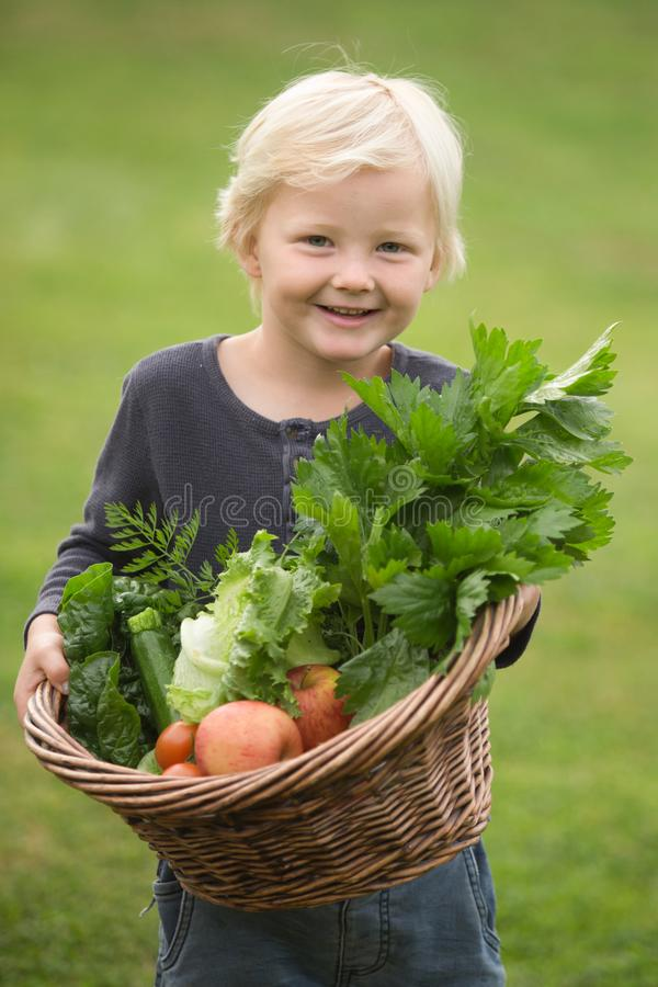 Junger blonder Gärtner führt stolz seine Ernte vor lizenzfreie stockfotos