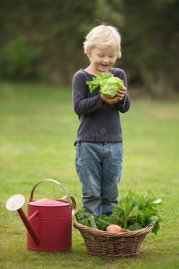 Junger blonder Gärtner führt stolz seine Ernte vor lizenzfreie stockbilder