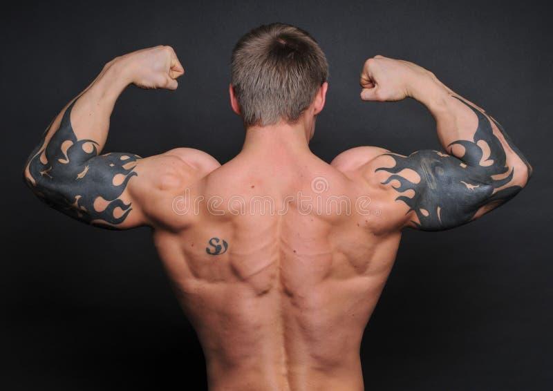 Junger Bodybuilder stockbild