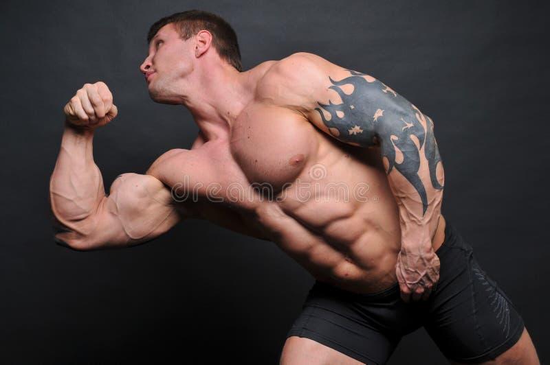 Junger Bodybuilder stockfotos