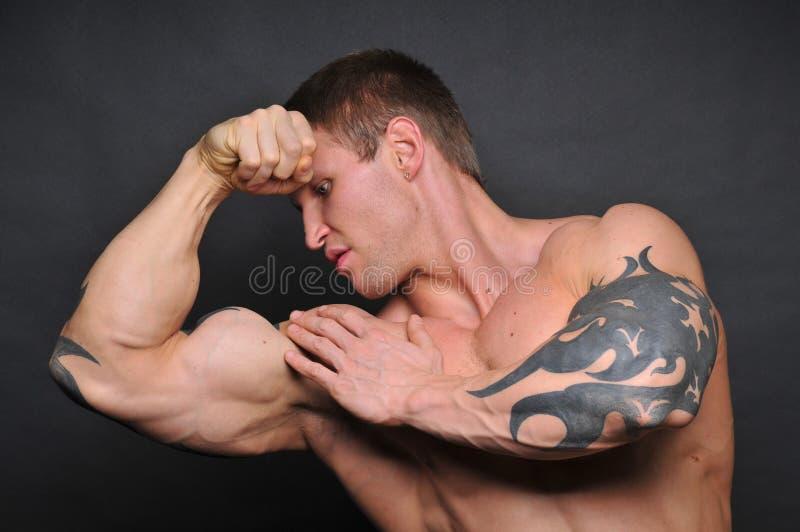 Junger Bodybuilder stockfotografie