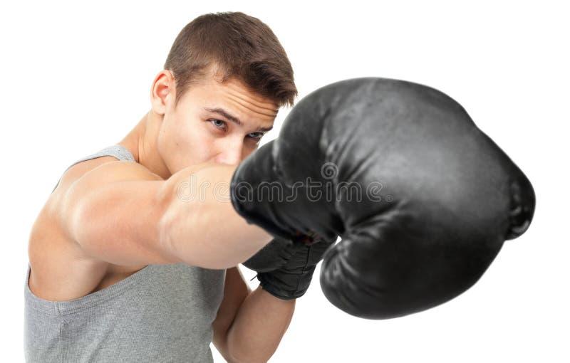Junger Boxer, der Durchschlag macht stockbilder
