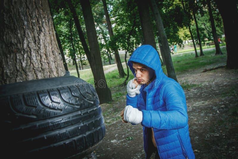 Junger Boxer im Training stockfoto