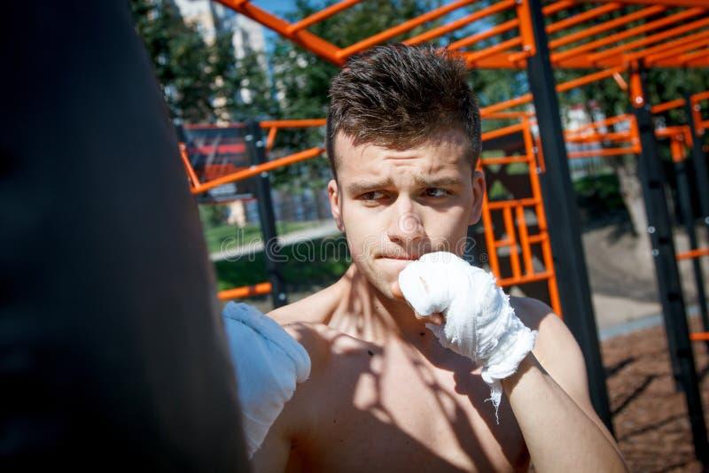 Junger Boxer im Training stockbilder
