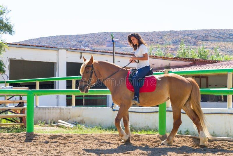 Junger Brunette auf einem braun-blonden Pferd in stockfoto