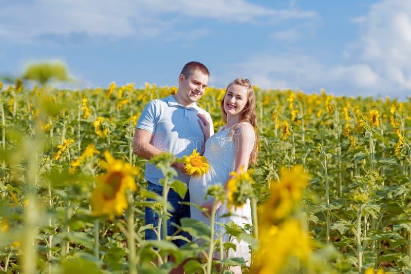 Junger Familienehemann und schwangere Frau auf einem Gebiet, in dem Leute Sonnenblumen an einem hellen sonnigen Tag anbauen Authe lizenzfreie stockbilder