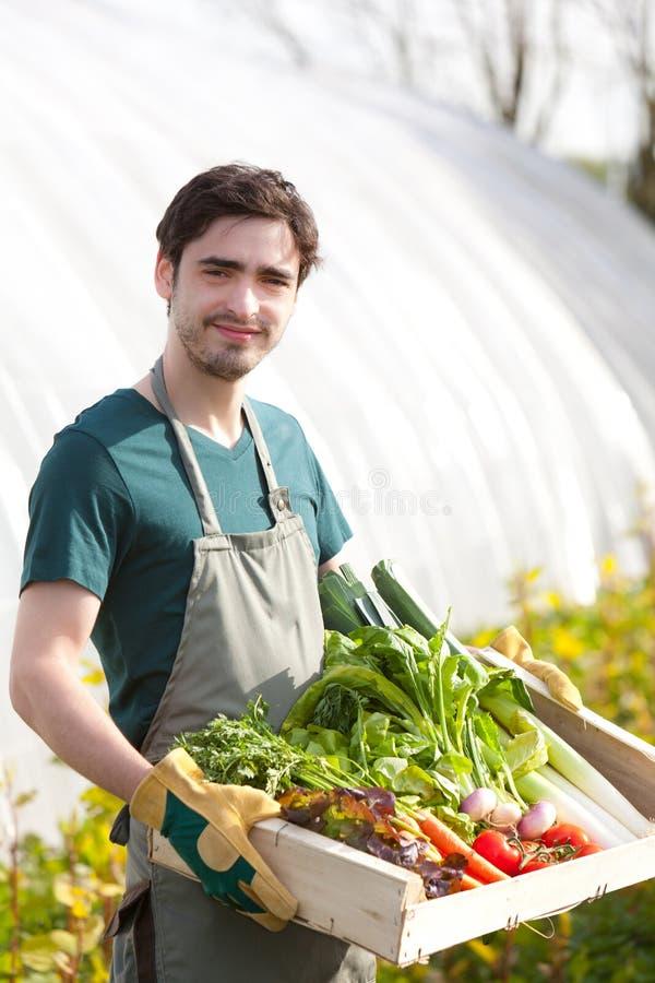 Junger glücklicher Landwirt mit einer Kiste voll vom Gemüse lizenzfreies stockbild