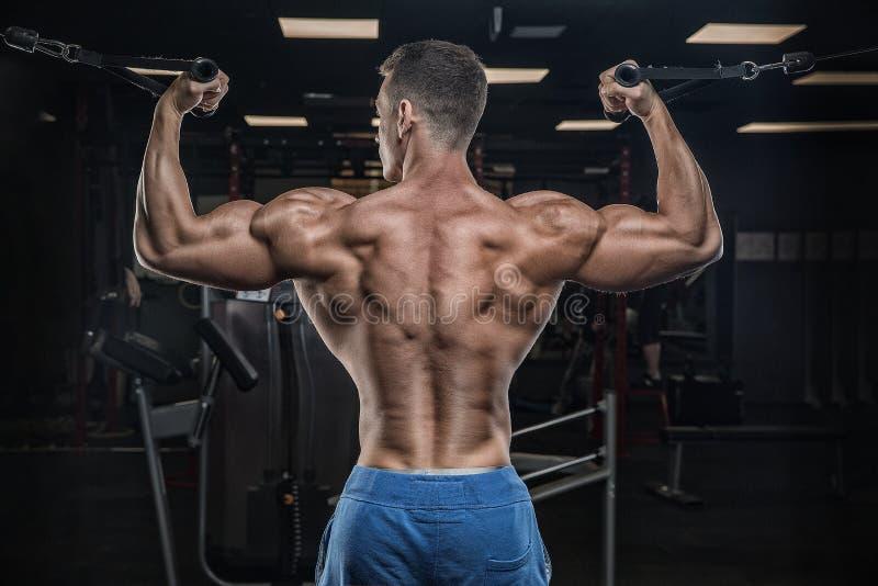 Junger hübscher männlicher Athletenbodybuilder, Weightlifter, exe tuend stockfotografie