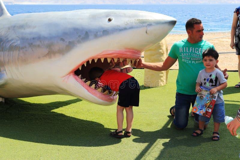 Junger Haifischforscher stockfotos