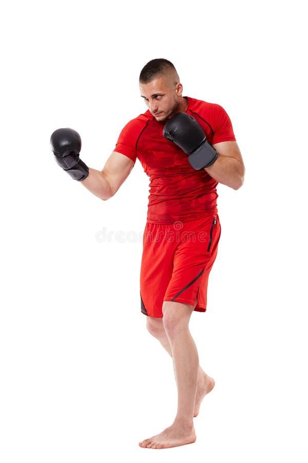 Junger kickbox Kämpfer auf Weiß lizenzfreie stockfotografie