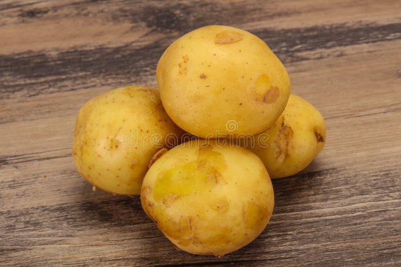 Junger kleiner Saisonkartoffelhaufen stockfotografie