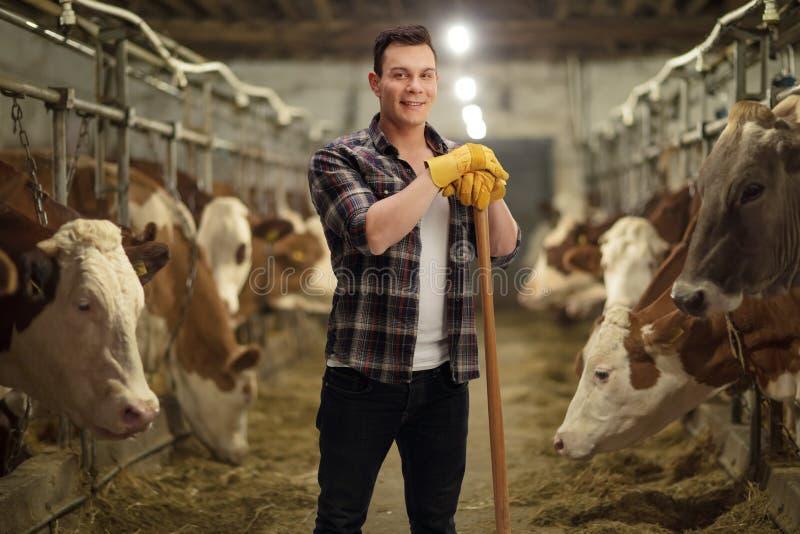 Junger Landarbeiter, der in einem Kuhstall aufwirft lizenzfreie stockfotos