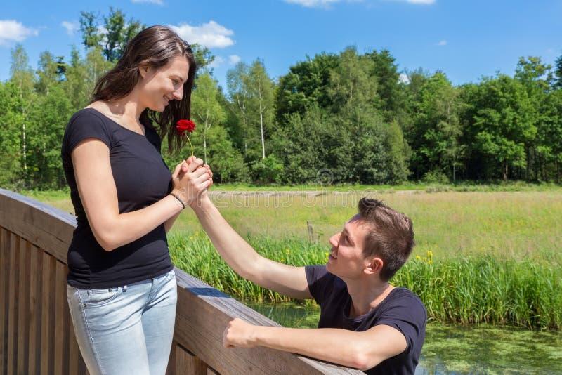 Junger männlicher Freund bietet Rotrose attraktivem Mädchen auf Brücke an lizenzfreie stockbilder